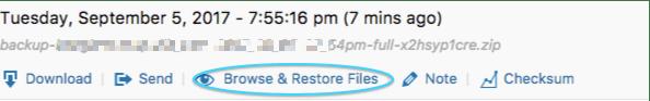 BackupBuddy Restore Files
