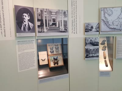 Various photographs are on display. Showcases on the walls feature butterflies and fossil artefacts.