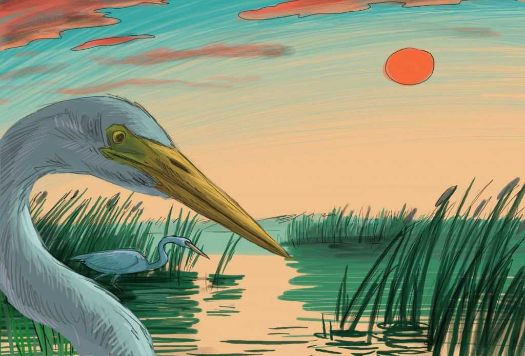 Tisza-tó, a zöld labirintus – Tisza-tó képregény mindenkinek!