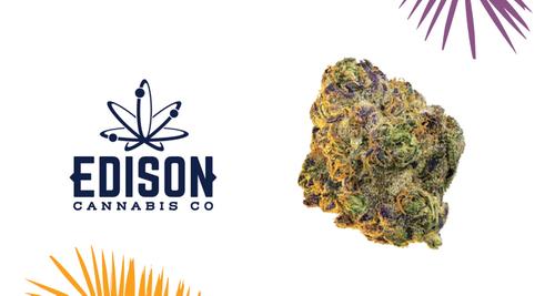 Edison Cannabis Co – Slurricane Strain
