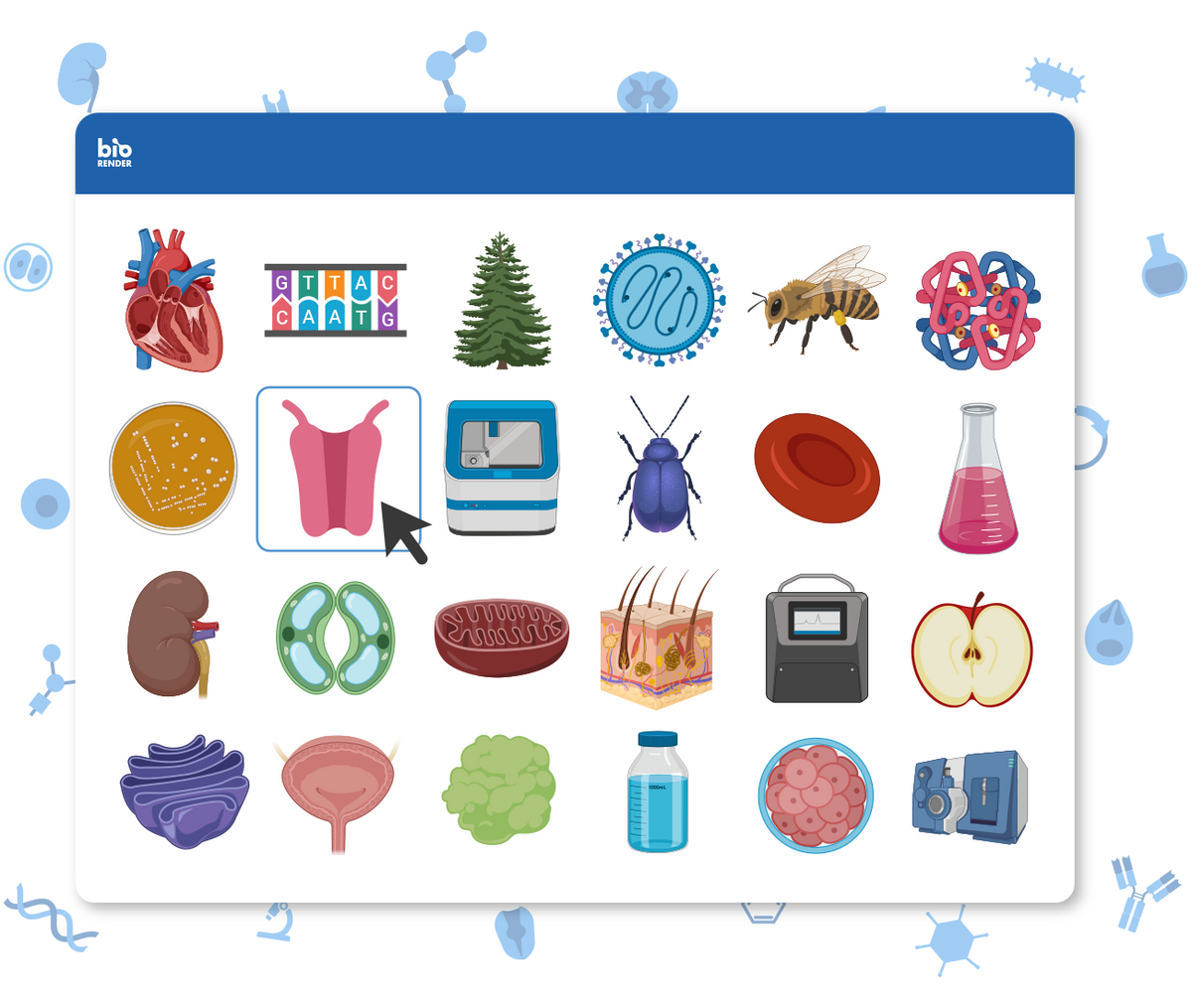 thousands of biological icons