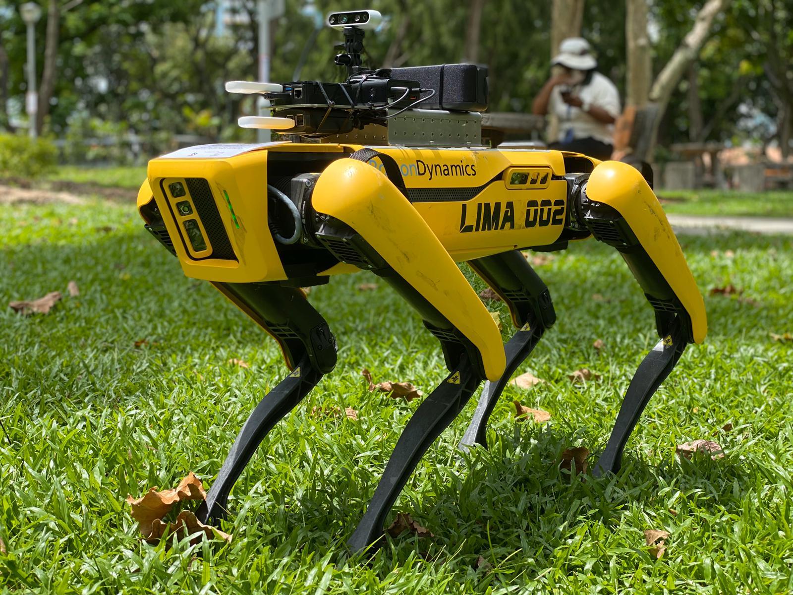 Big push for AI proves fruitful and useful