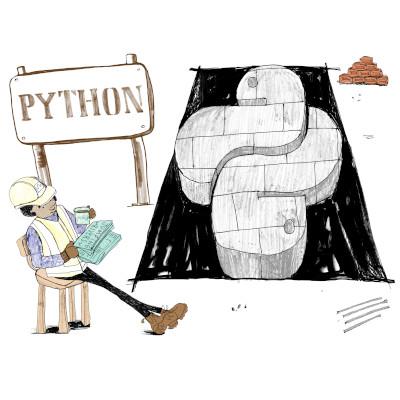 First Steps in Python Programming