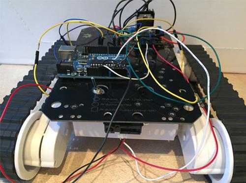 Rover bot