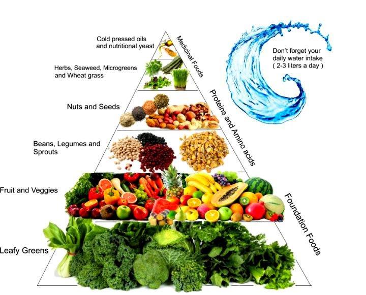 Plant-based food pyramid