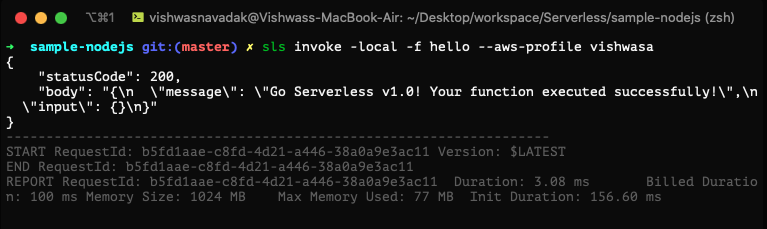 Output from the serverless invoke