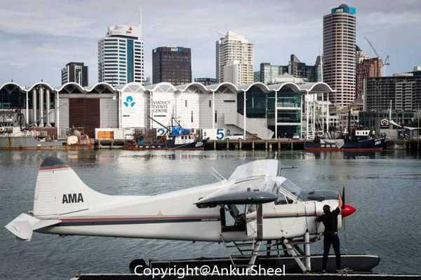 Auckland_Seaplanes-2