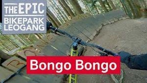 Bongo Bongo | Freeride Trail im Bikepark Leogang/Saalfelden