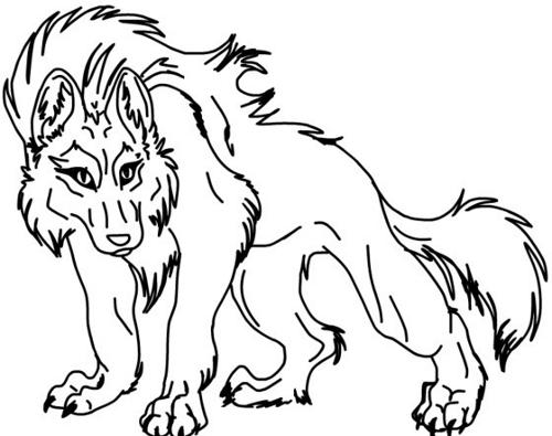 Fire Wolf Sketch