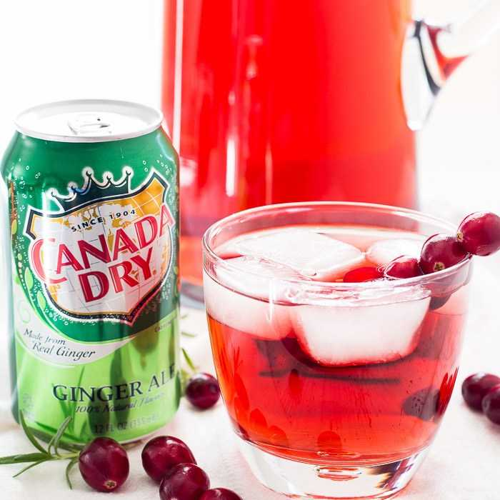Absolutely Cranberry Smash Cocktail