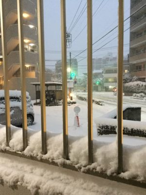 Tokyo-2018-snowpocalypse