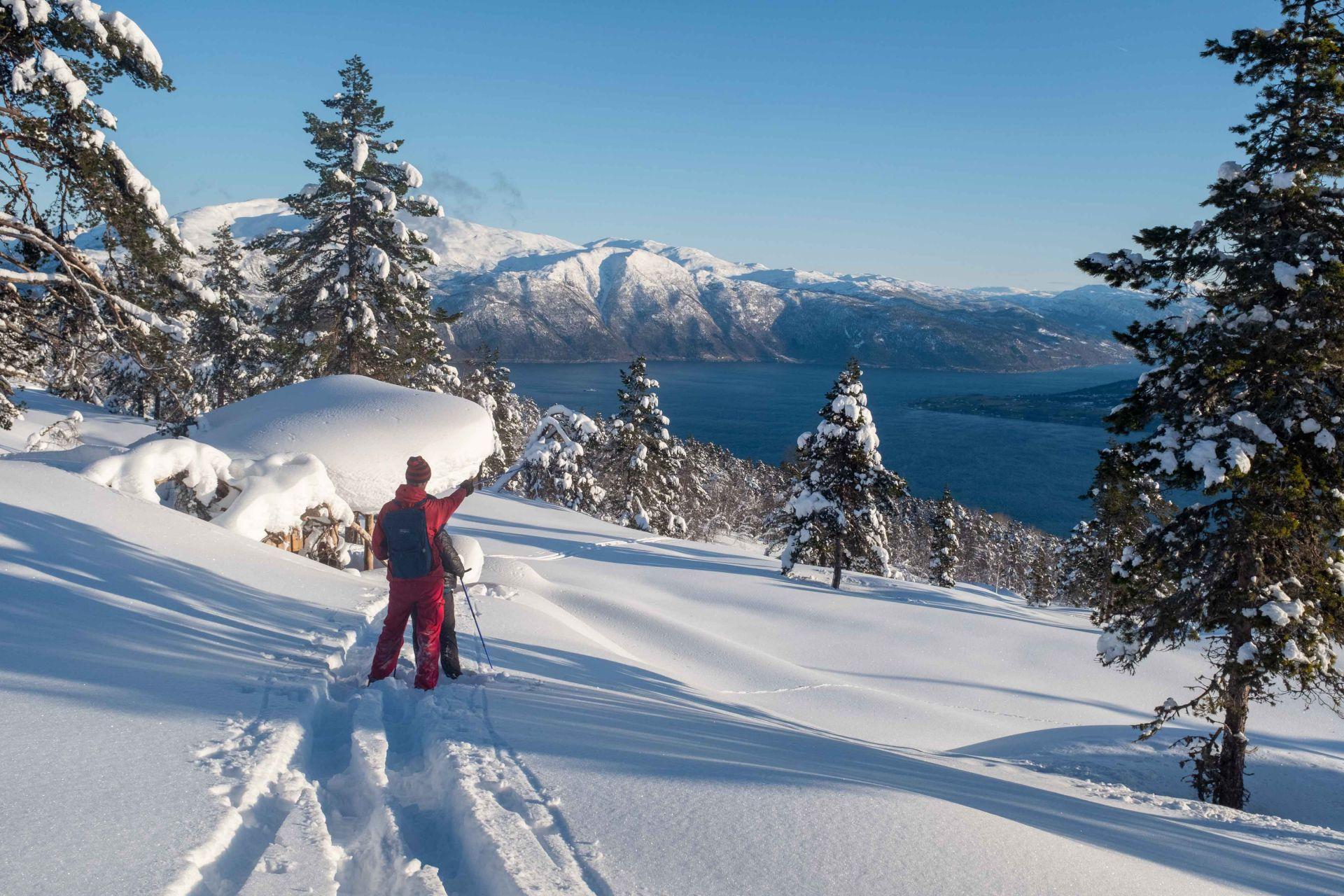 Amazing Snow Shoe Hike