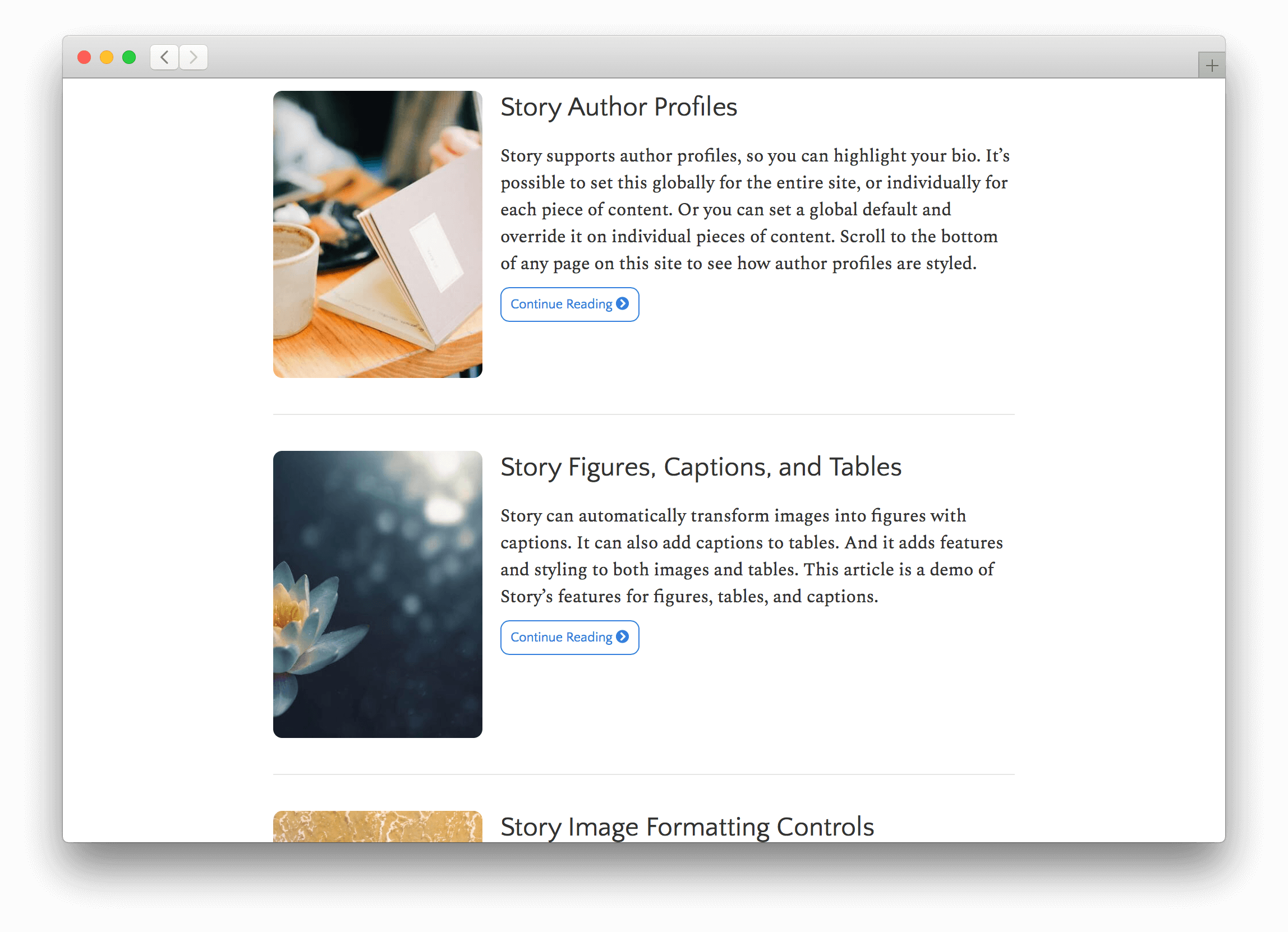 Story displays image thumbnails and summary previews of content.