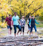 Wild Kiwi Team