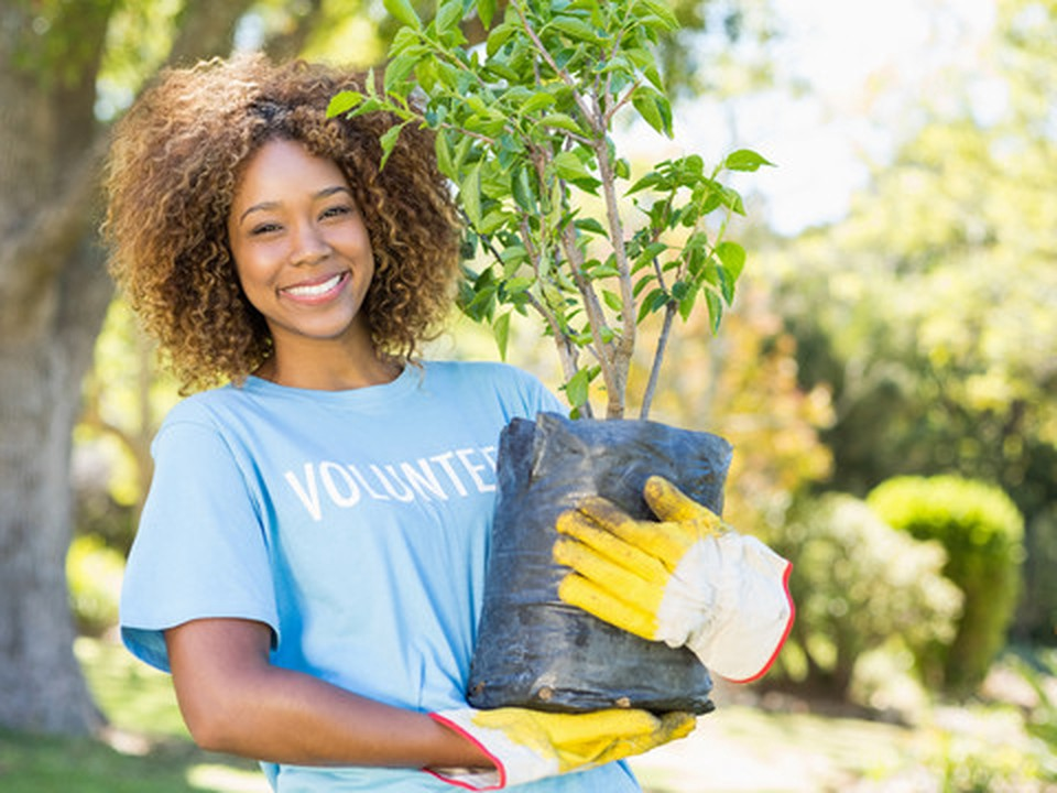 A woman standing wearing garden yellow gloves and holding a small tree