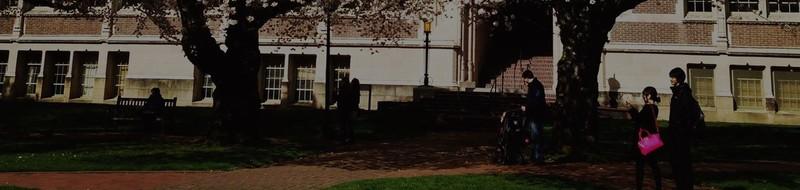 Students on campus at the University of Washington