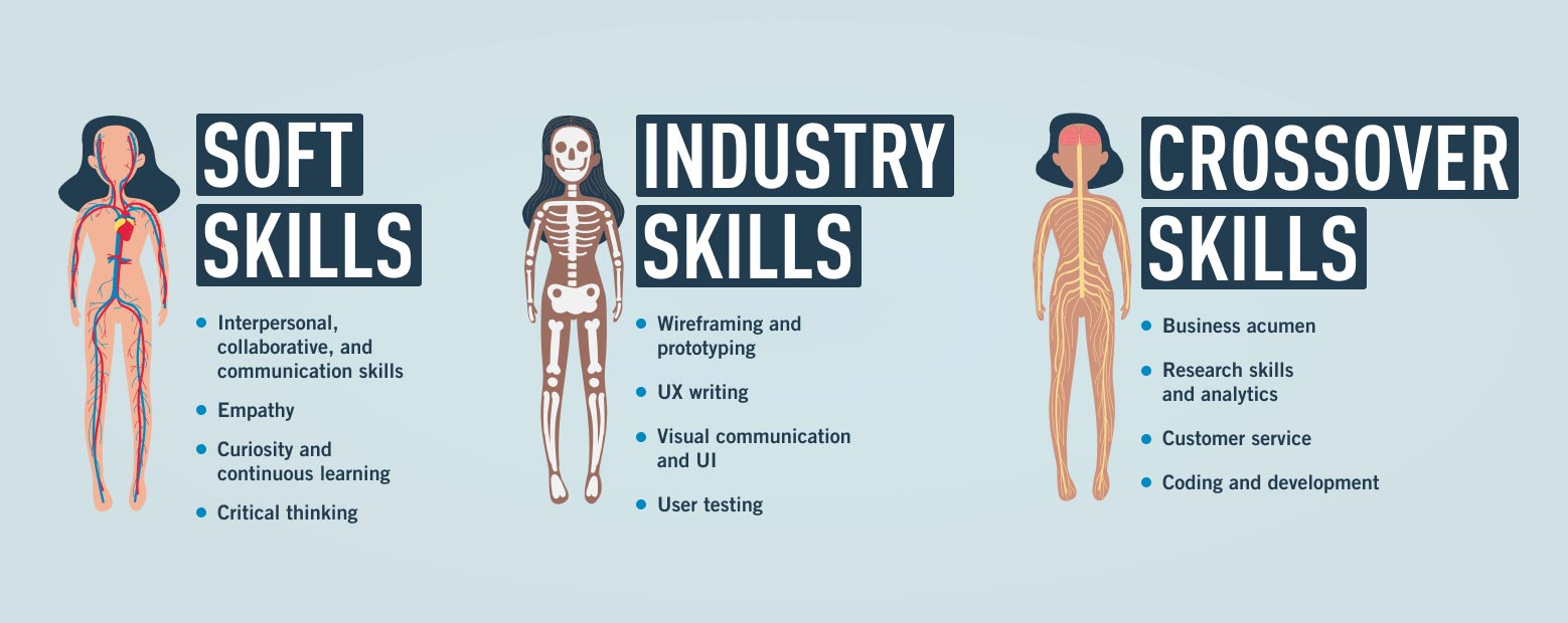 Three illustrated bodies, one depicting each of a cardiovascular system (soft skills), skeletal system (industry skills), and nervous system (crossover skills)