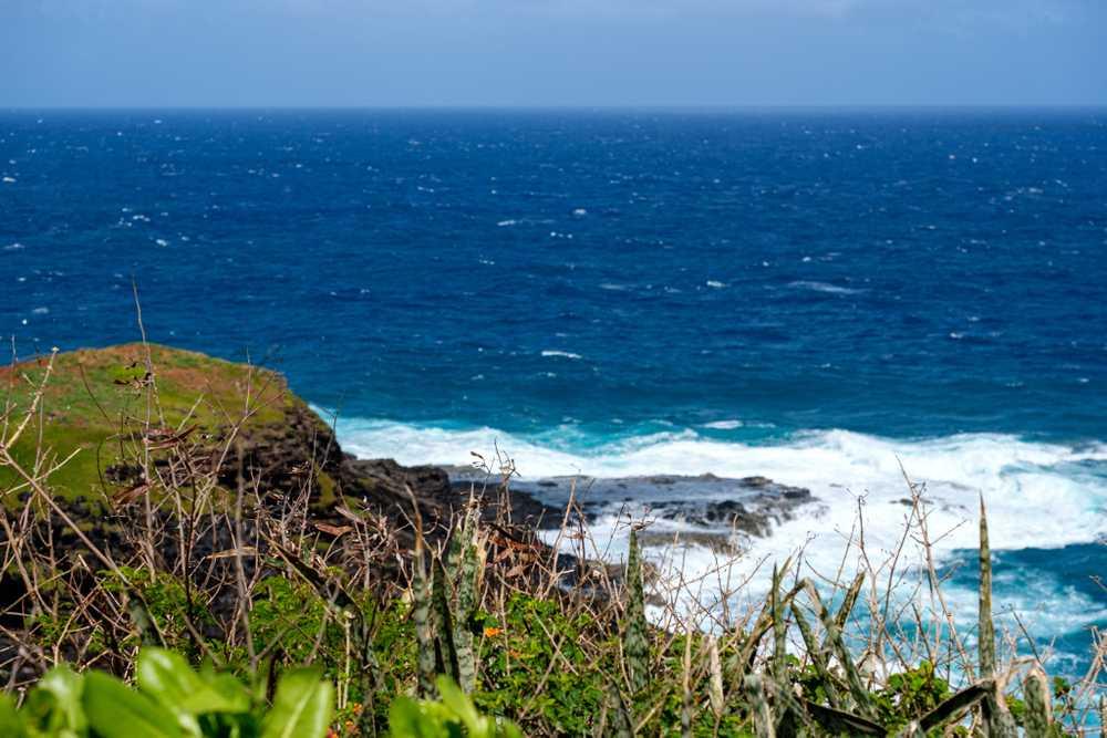 Kīlauea Point