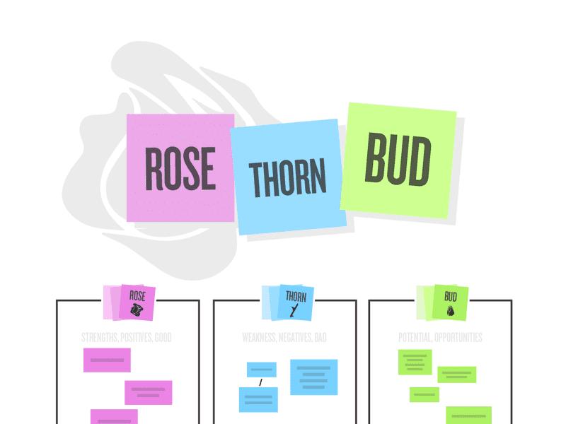 Rose, Thorn, Bud