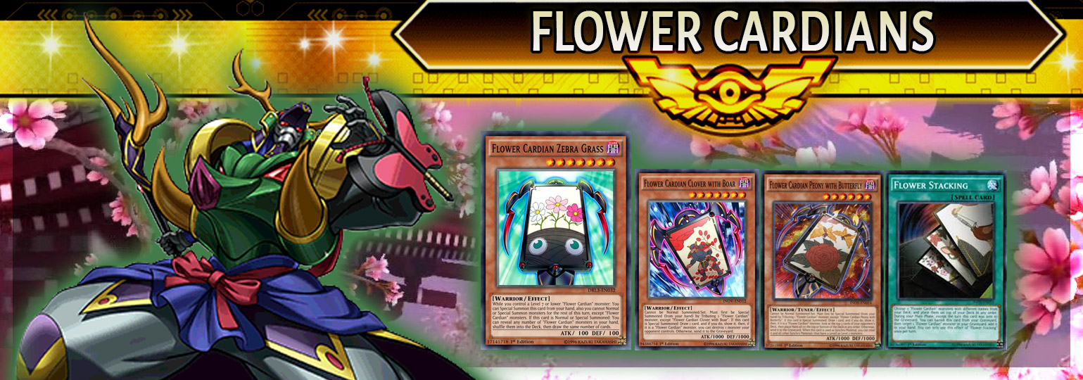 Flower Cardian Breakdown | YuGiOh! Duel Links Meta