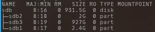 sample lsblk output