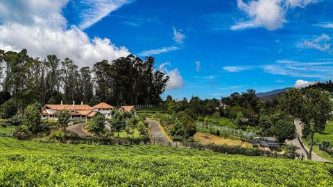 Colonial style House for Sale in Wellington, Coonoor - House for sale in Wellington-Bettati, coonoor