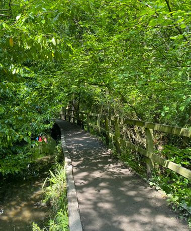 Meanwood Valley Local Nature Reserve