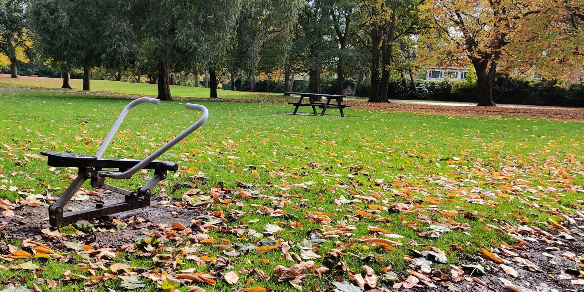 Rowing machine in Burley park in middle of green field