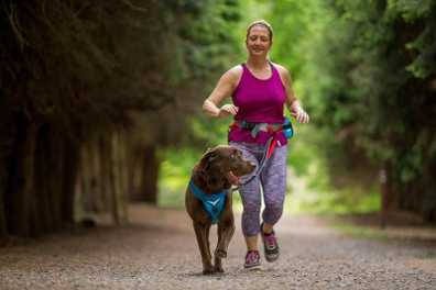 The Dog Race Database: Fitness and Fun Together