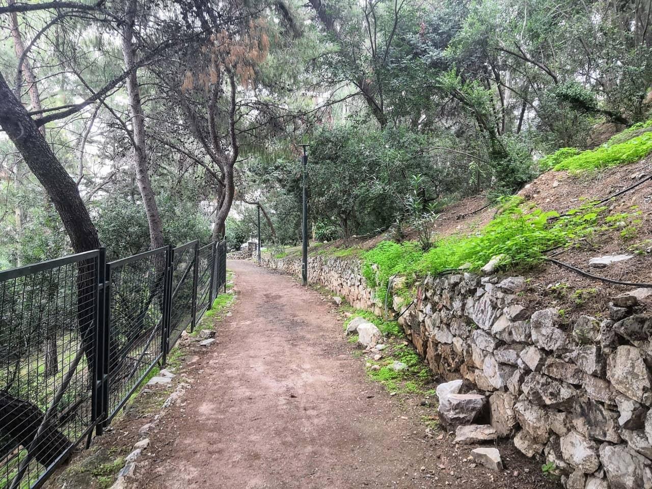 Green pathway on a hillside