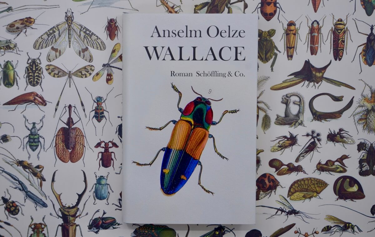 Wallace von Anselm Oelze.