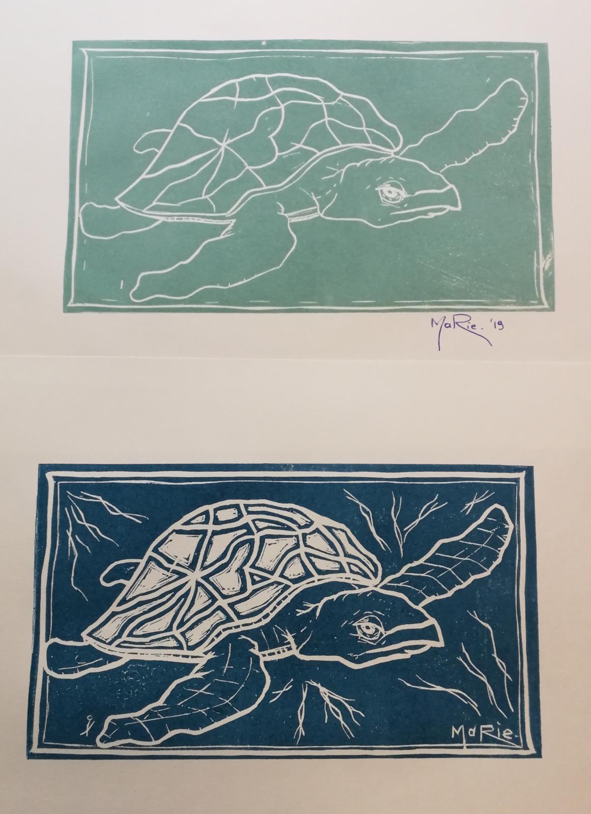 foto zeeschildpad stage & 1en 2