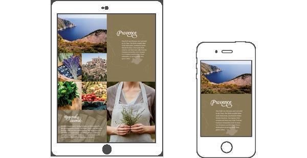 Shopware 5: Marketing in Perfektion