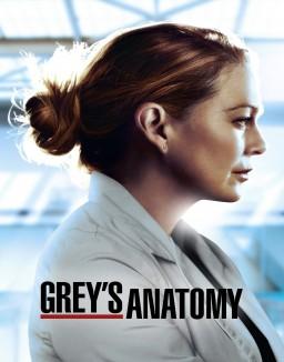 Voir Serie Grey's Anatomy en streaming
