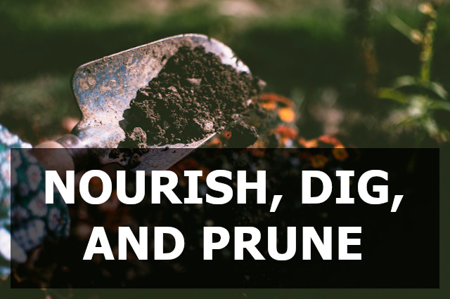 Nourish, dig, and prune