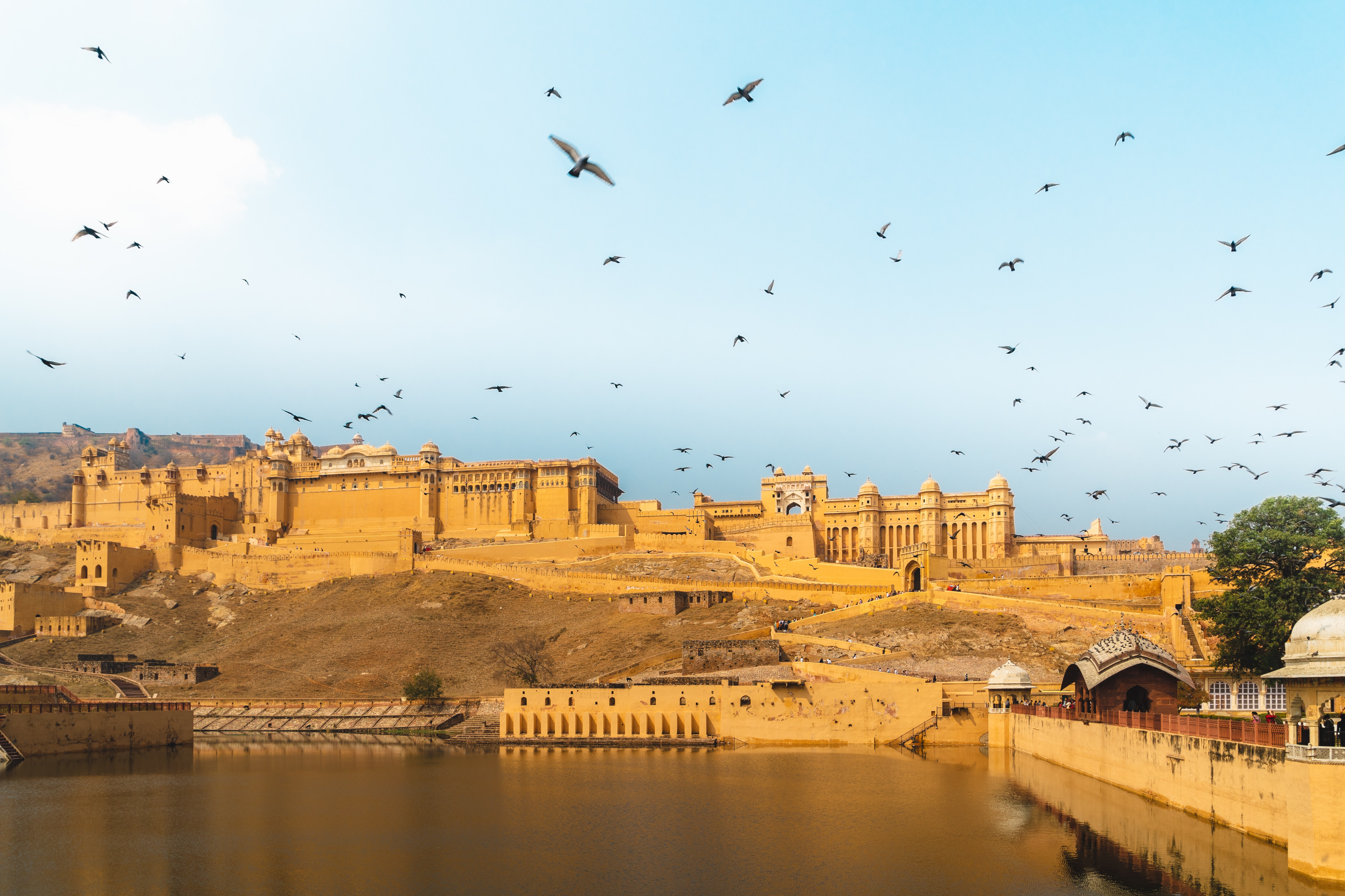 sandstone building with birds soaring overhead in jaipur, india