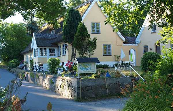 Bakkegaard Møns Klint