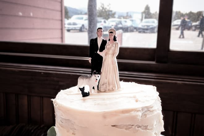 The top of a wedding cake. The bride and groom figures are obviously quite old, but a small husky and black cat of more recent providence have also been added to the top of the cake.