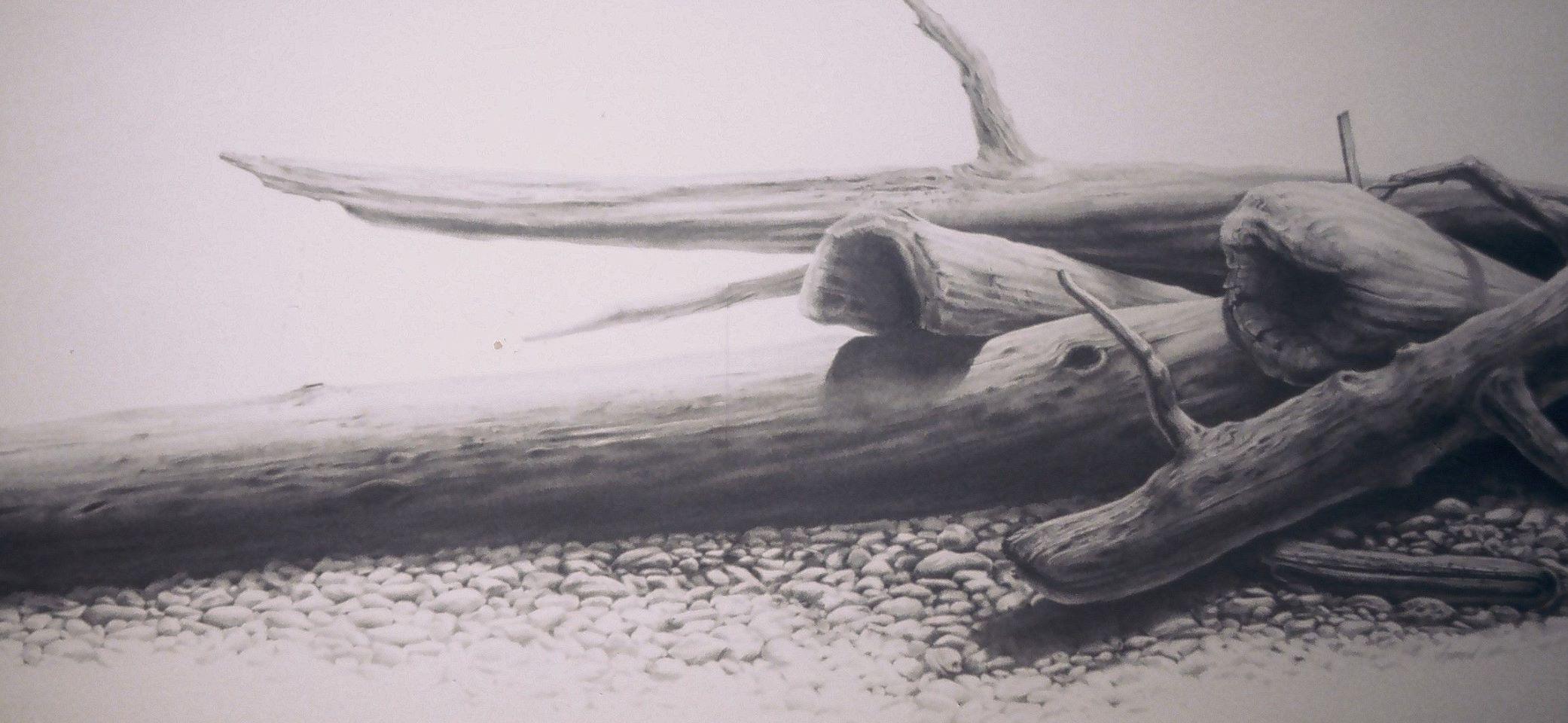 driftwood on a peach