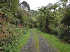 Waterline Road