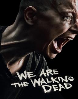 Voir Serie The Walking Dead en streaming