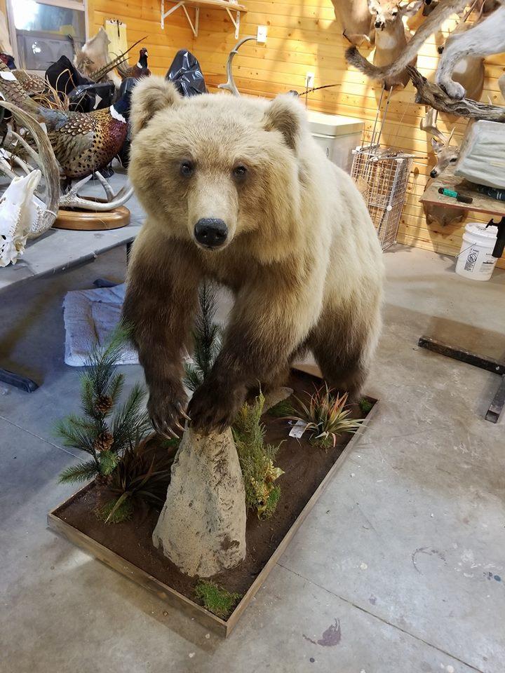 Becky's Bear