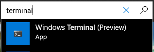 Windows Store Terminal