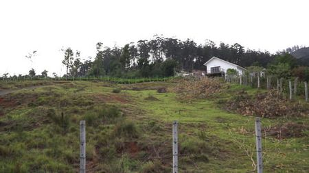 Plot from Neighbouring House