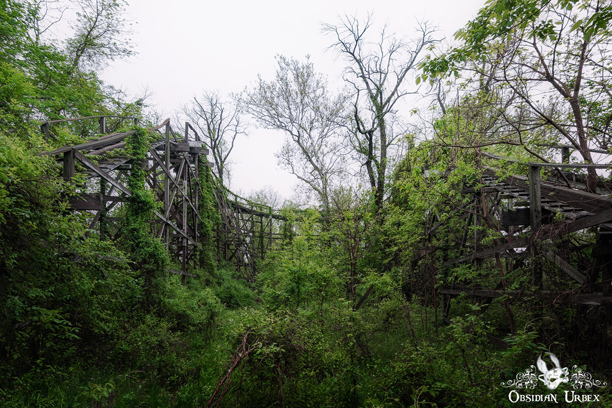 abandoned wooden rollercoaster track overgrown with plants