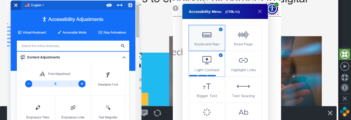 Website accessibility overlay tools