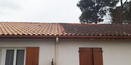 Entretien de la toiture