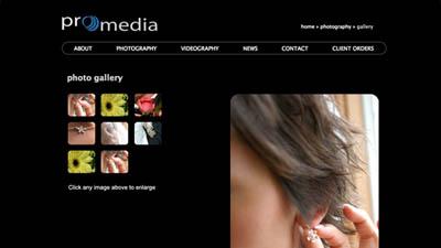 Promedia Screenshot