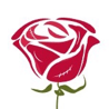 Director of Technology at the Concrete Rose Foundation
