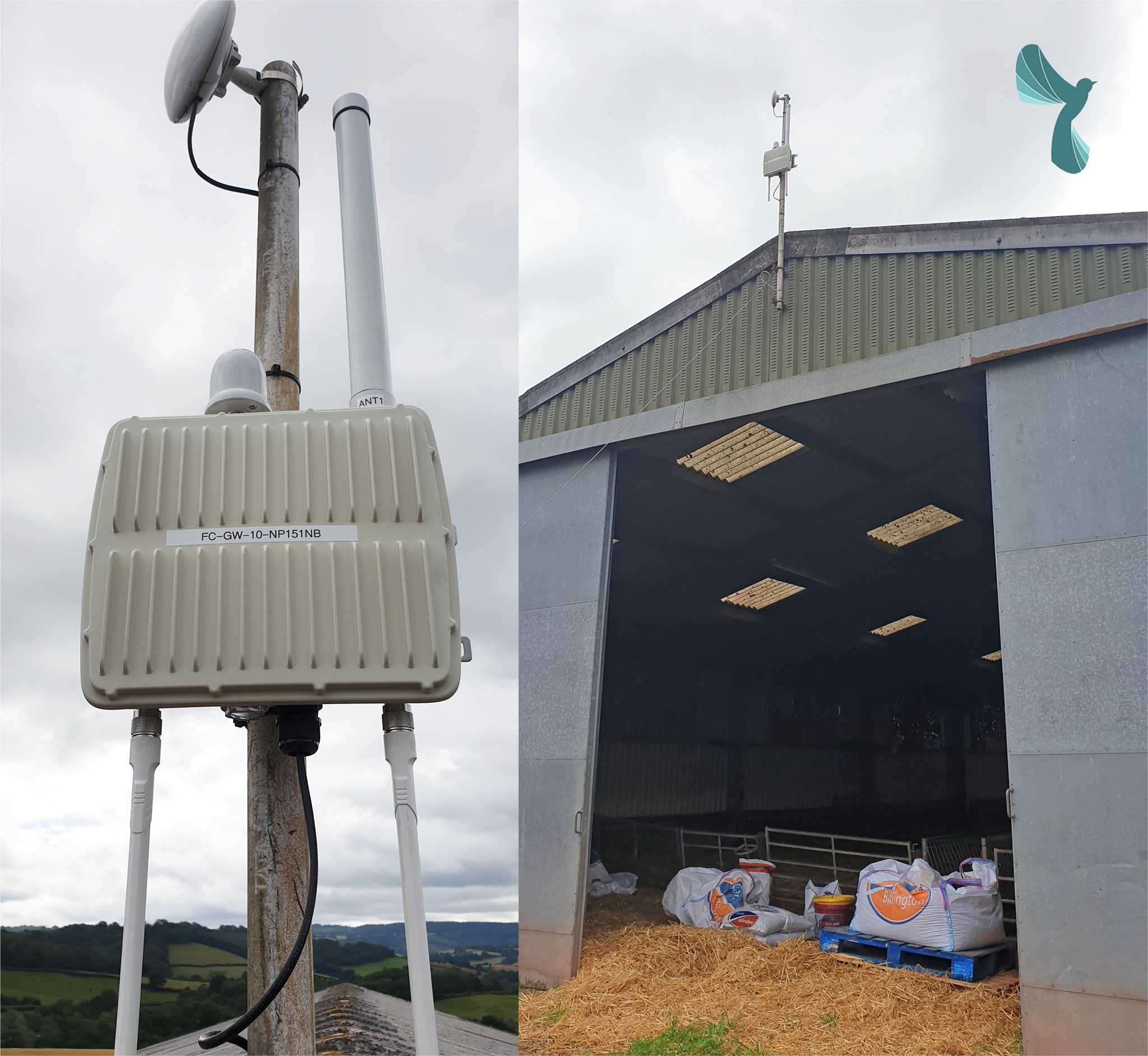 Supporting Welsh Farmers with technology